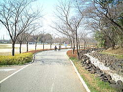 uchimaki15.jpg