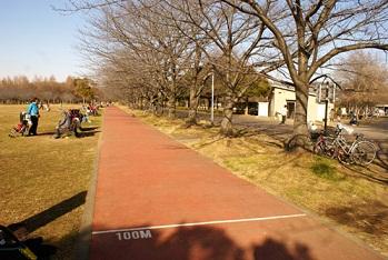 みさと公園.jpg
